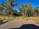 TBD Live Oak Road - Photo 11