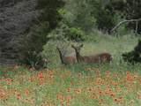 38008 Cedar Trail - Photo 34