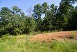 Lot 11 County Road 436 - Photo 1