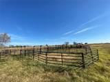 122acre County Road 4763 - Photo 17