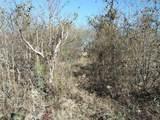 8 B Pyrenean Oak Circle - Photo 2