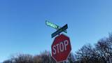 7350 Shady Oaks Drive - Photo 4