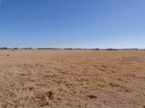 00 Parker Dairy Road - Photo 2