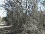 38 A Weeping Oak - Photo 6