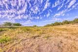 1009 Spring Ranch Drive - Photo 3