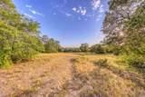 1009 Spring Ranch Drive - Photo 5
