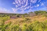 1005 Spring Ranch Drive - Photo 1