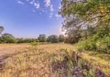 1005 Spring Ranch Drive - Photo 4