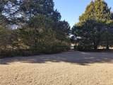 1448 Cedar Mills Road - Photo 9