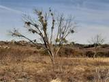 Lot 977 Cinnamon Teal - Photo 2