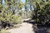 1797 Timberwolf Trail - Photo 23