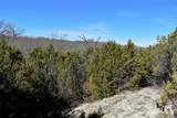 1797 Timberwolf Trail - Photo 25