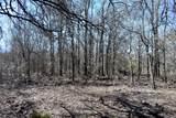 1797 Timberwolf Trail - Photo 34
