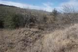 Lt 87 Canyon Wren - Photo 8