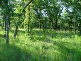 Lot 173 Grand Harbor Boulevard - Photo 4