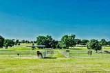 16621 Stallion Shores Court - Photo 14