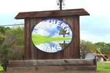 000 Southern Oaks - Photo 2