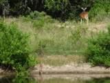 5955 County Road 292 - Photo 33