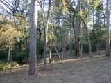 Lot 176 Deer Path - Photo 4