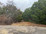 25030 Forrest Drive - Photo 4