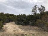 918 Thicket Trail - Photo 6