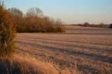 000 Blanton Hill Road - Photo 2