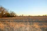 000 Blanton Hill Road - Photo 25
