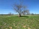 209ac Farm Road 269 - Photo 5