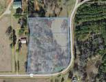 Tract 4 County Road 118 - Photo 1