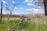 4636 County Road 707 - Photo 2
