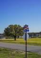 203 Maverick Court - Photo 9
