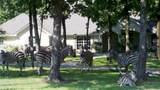 LT 218 Safari Shores - Photo 10