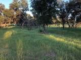 1100 Private Road 167 - Photo 2