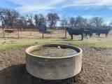 8895 Farm To Market 1749 - Photo 17