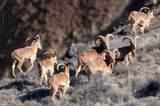 12000 Agua Fria Ranch Road - Photo 2