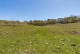 184 County Road 249 - Photo 7