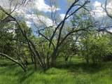 4133 Willow Oak Bend - Photo 11