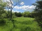4133 Willow Oak Bend - Photo 2