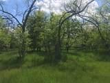 4133 Willow Oak Bend - Photo 5