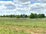 TBD County Road 417 - Photo 23