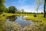 1581 Triple Creek Loop - Photo 5