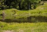 1581 Triple Creek Loop - Photo 6