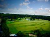 105 Ryder Cup Trail - Photo 16