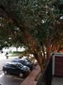 9805 Walnut Street - Photo 39