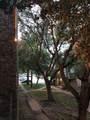9805 Walnut Street - Photo 40