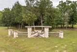 1180 Hwy 276 Drive - Photo 29