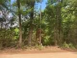 TBD County Road 1508 - Photo 10