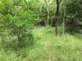 4 A Vista Oak Drive - Photo 15