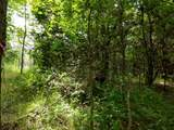 4 A Vista Oak Drive - Photo 19