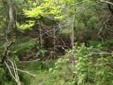4 A Vista Oak Drive - Photo 20